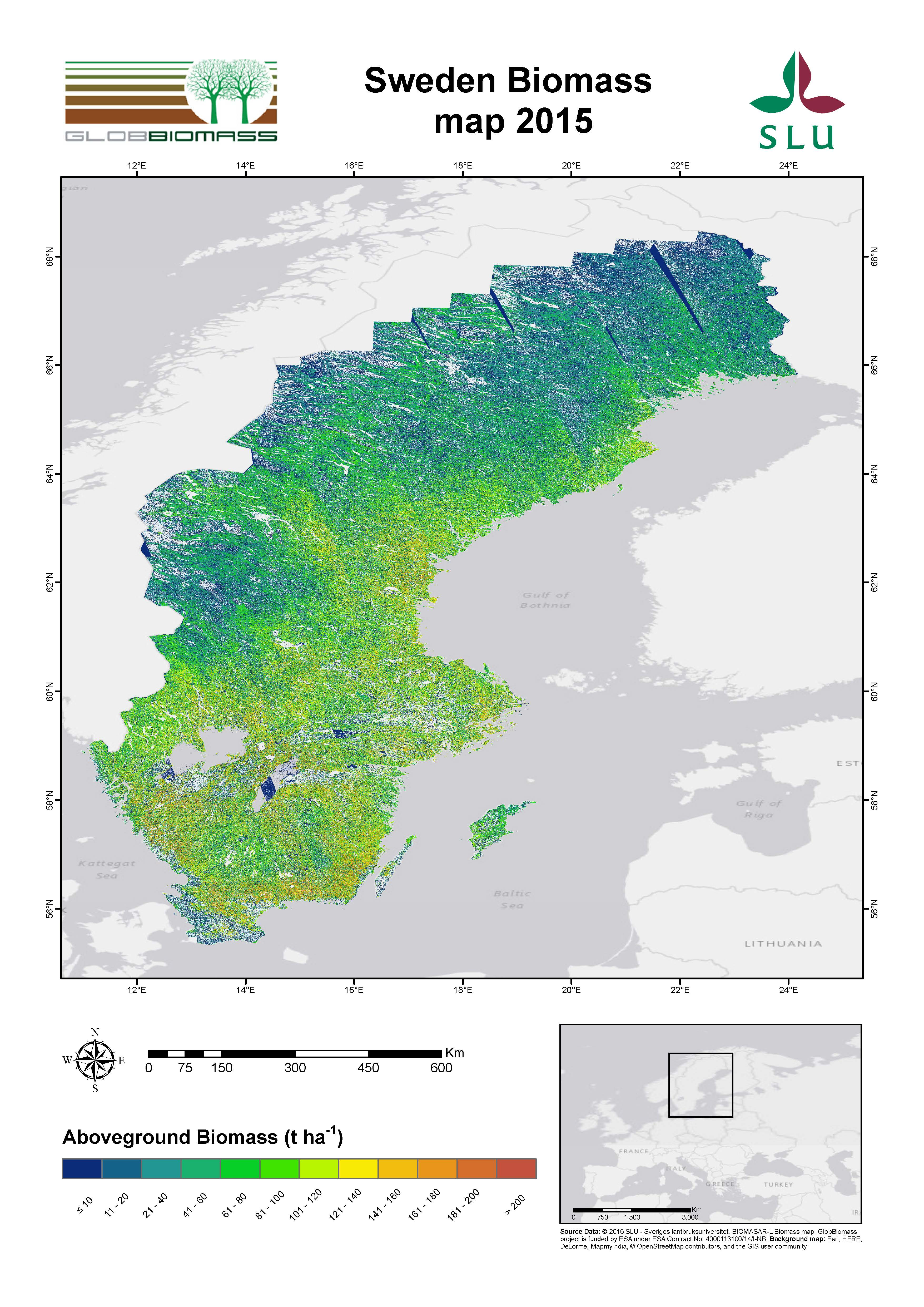 Regional Biomass Mapping Sweden ESA DUE Globbiomass - Sweden map 2015